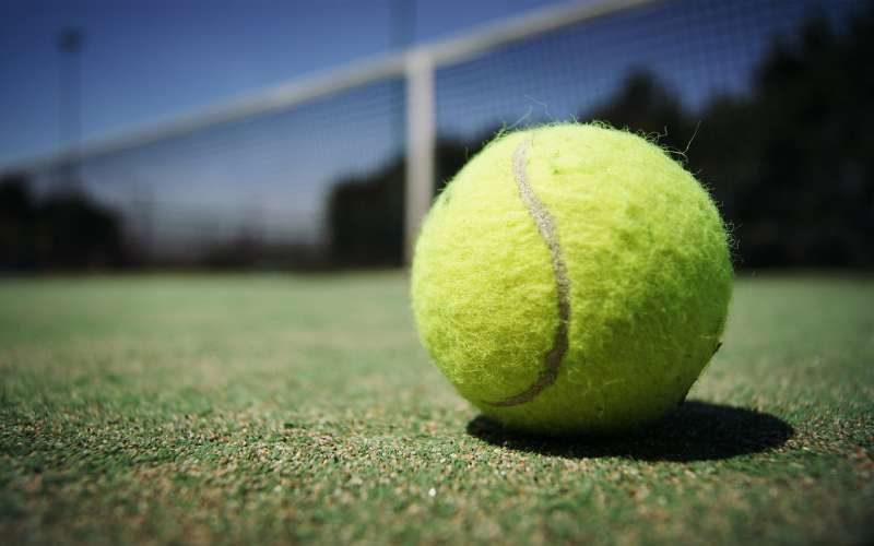 sport tennis ball net